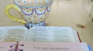 wedding journal 3
